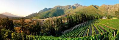 b2ap3_thumbnail_Franschhoek-winter-wines.jpg